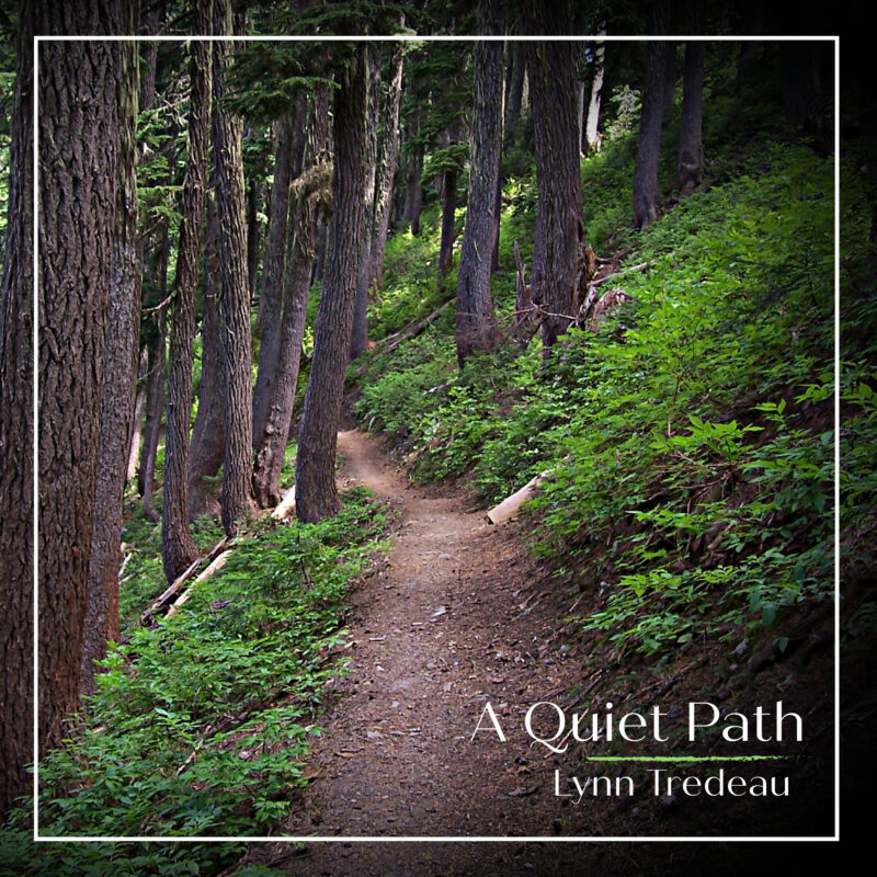 A Quiet Path -Physical Album